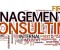 business-management-consulting