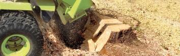 Slide-Stump-Grinding