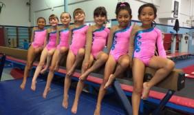 girls gymnastics attire