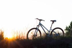 bicycle-bike-grass