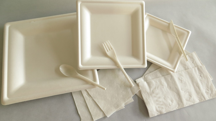 sugarcane plates wholesale