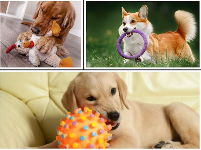 dogs-toys