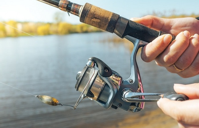 spinning-rod-and-reel