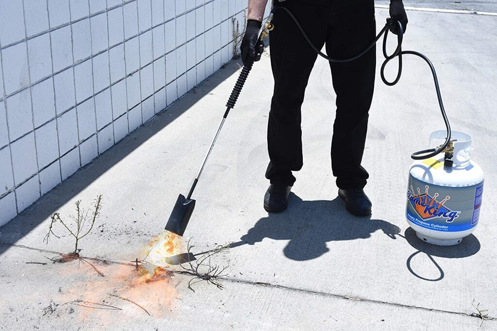 weed torch wiping invasive plants